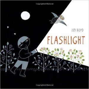 Flashlight book cover